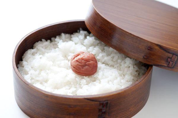開けたら驚愕したお弁当エピソード「米とオクラのみ」「弁当箱にそうめん。水筒に麺つゆ」
