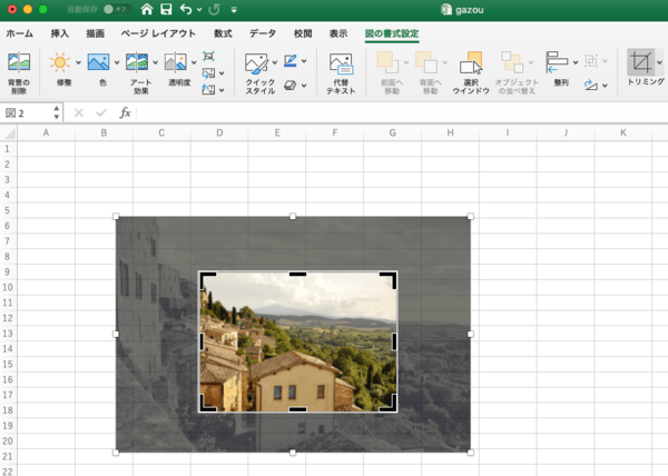 Mac版Excelで画像を挿入するには?トリミングや画像の保存や圧縮など基本の使い方を紹介